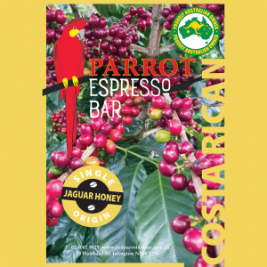 Costa Rica Single Origin coffee label square