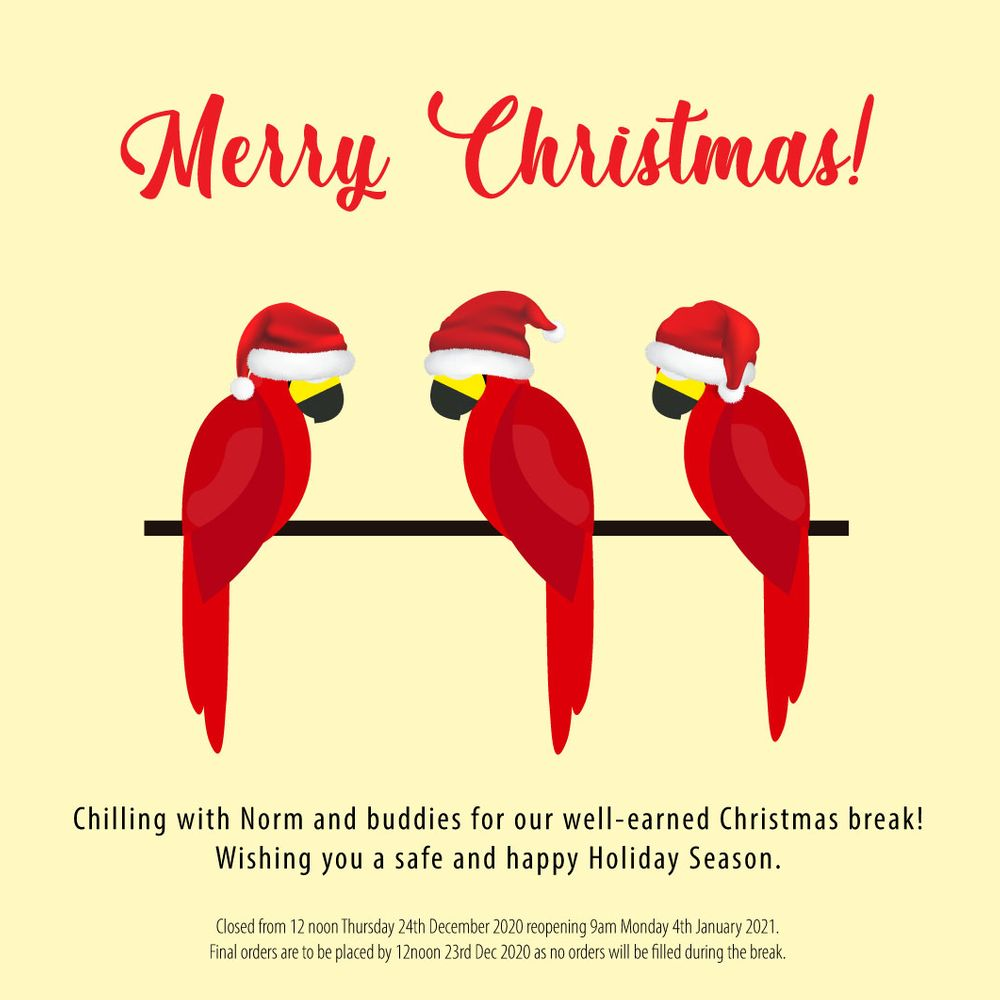 Merry Christmas from Red Parrot Team